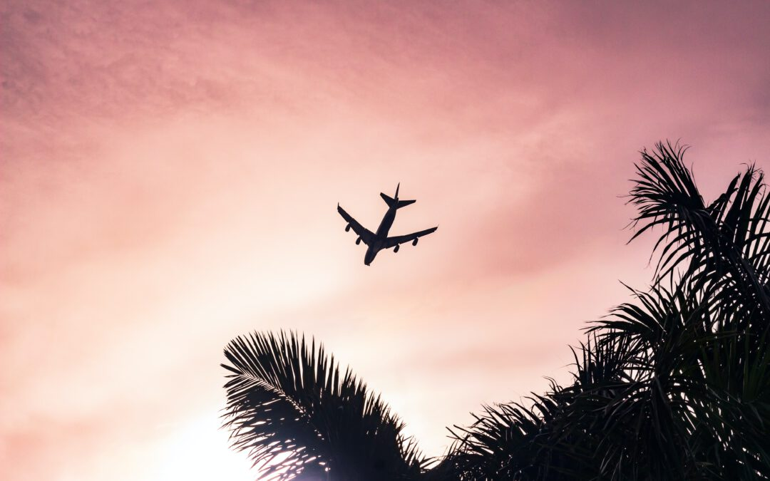 Delitos aeronáuticos (VIII): Falsedad.